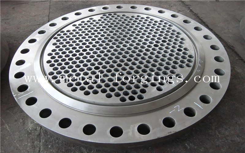Tube Sheet Double Stainless Steel Forged Disc 1.4462, F51, S31803 F60, S32205 F53, S32750